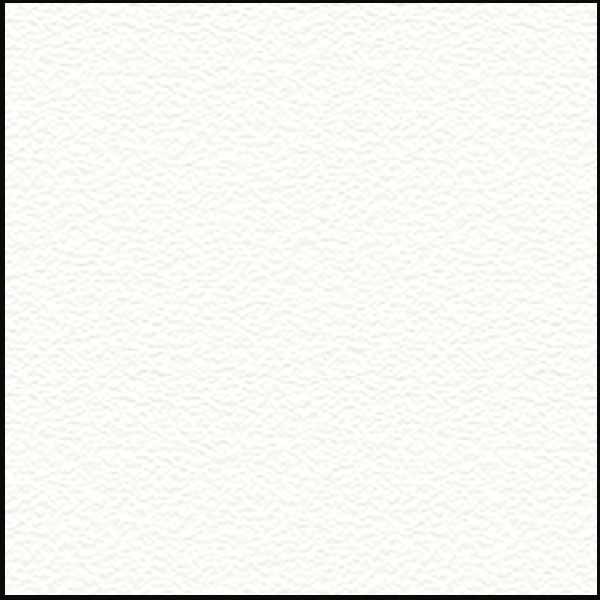 Biały RAL9003